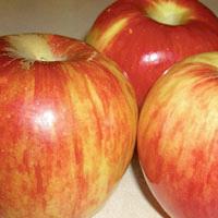 FV;Apples;Jonothan