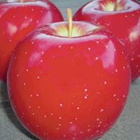 FV;Apples;RedFuji