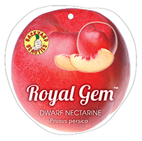 RoyalGemedit