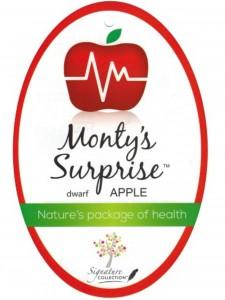 Apple_MontysSurprise_BalhannahNurseries_e1000x